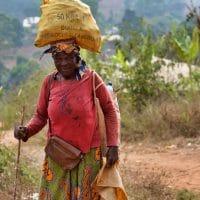 Ce qu'il faut voir au Cameroun
